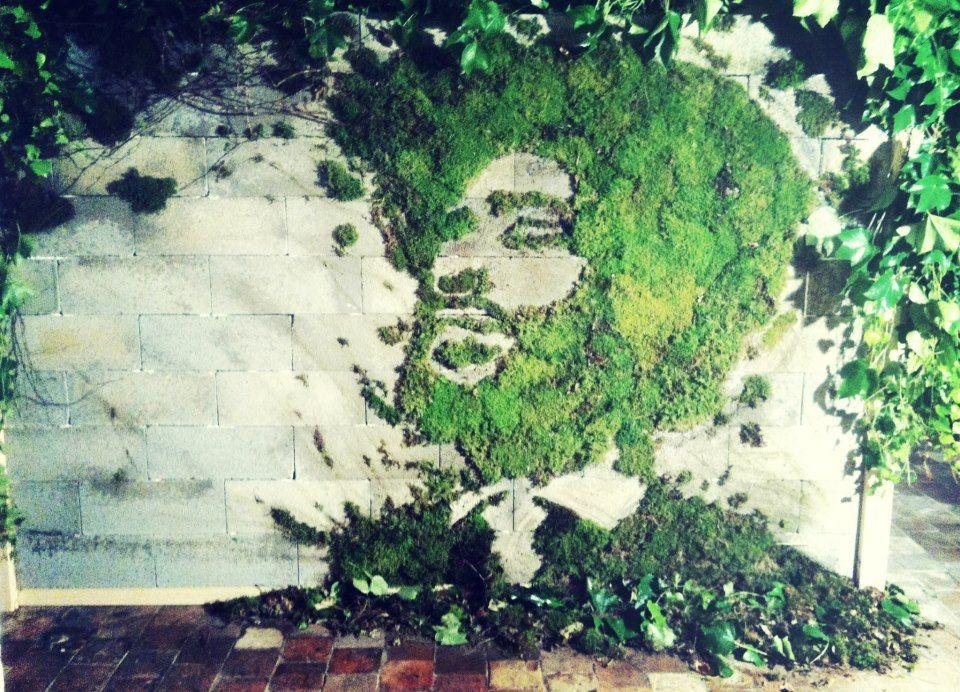 arte urbano rostro con musgo