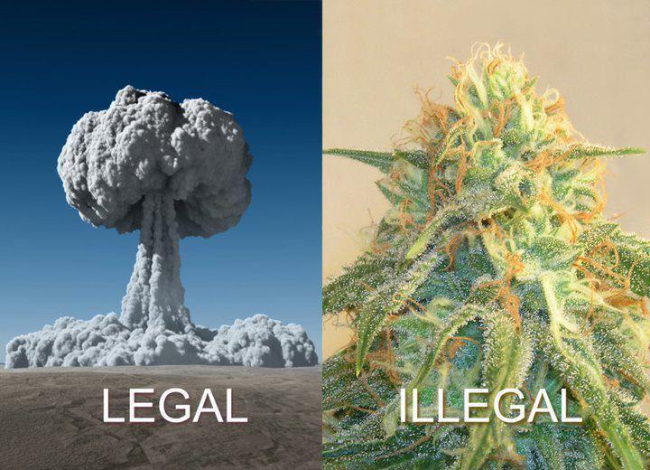 Legal e ilegal