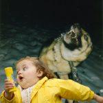 Bubble Girl vs perro rabioso