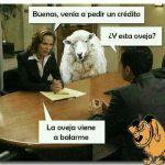 ¿Y esta oveja?