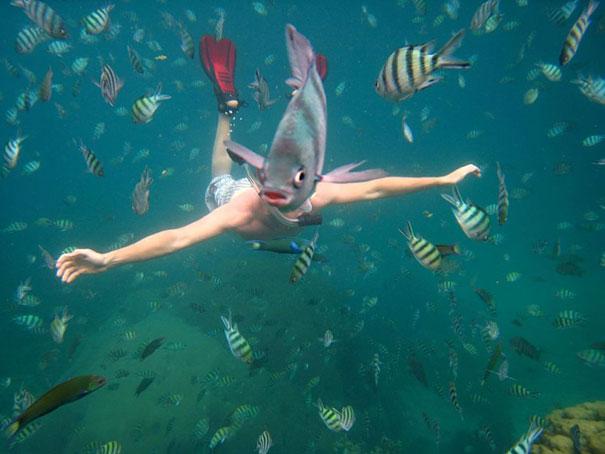 Cabeza-pez