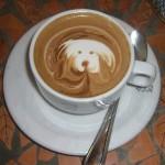 Café – dibujo de perro
