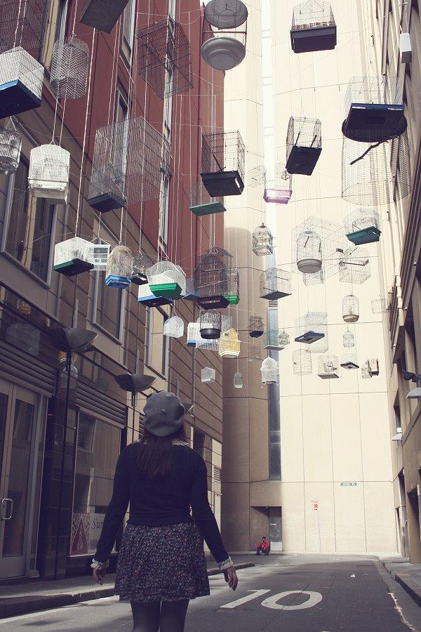 calle decorada con jaulas