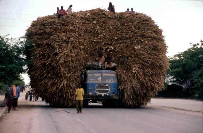 camion lleno de paja