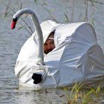 Lo último en técnicas para cazar patos
