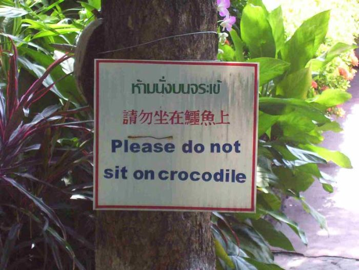 Cartel - Do not sit on crocodile