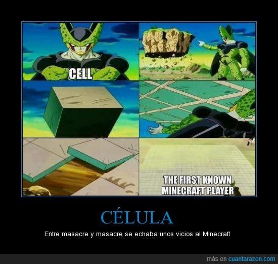 Célula y su afición al Minecraft