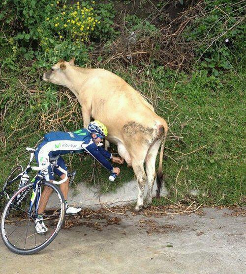 Ciclista rural