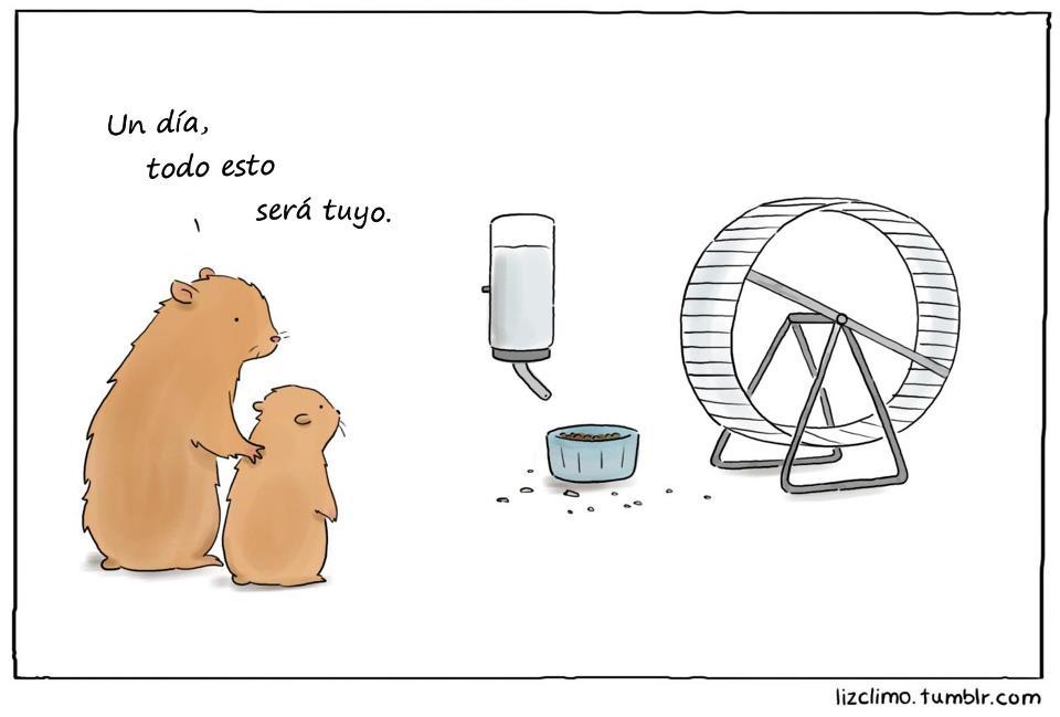De hamster padre a hamster hijo