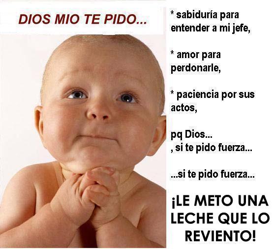 Imagenes graciosas de bebés con frases - Imagui
