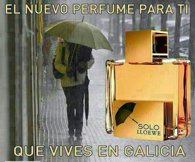 el nuevo perfume para ti que vives en galicia solo lloewe