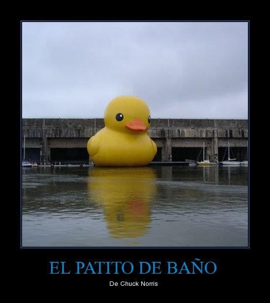 El patito de baño de Chuck Norris