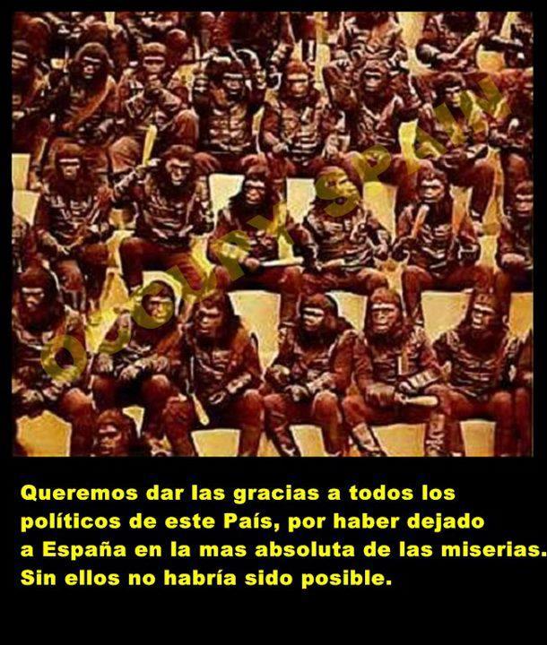 Gracias, políticos españoles