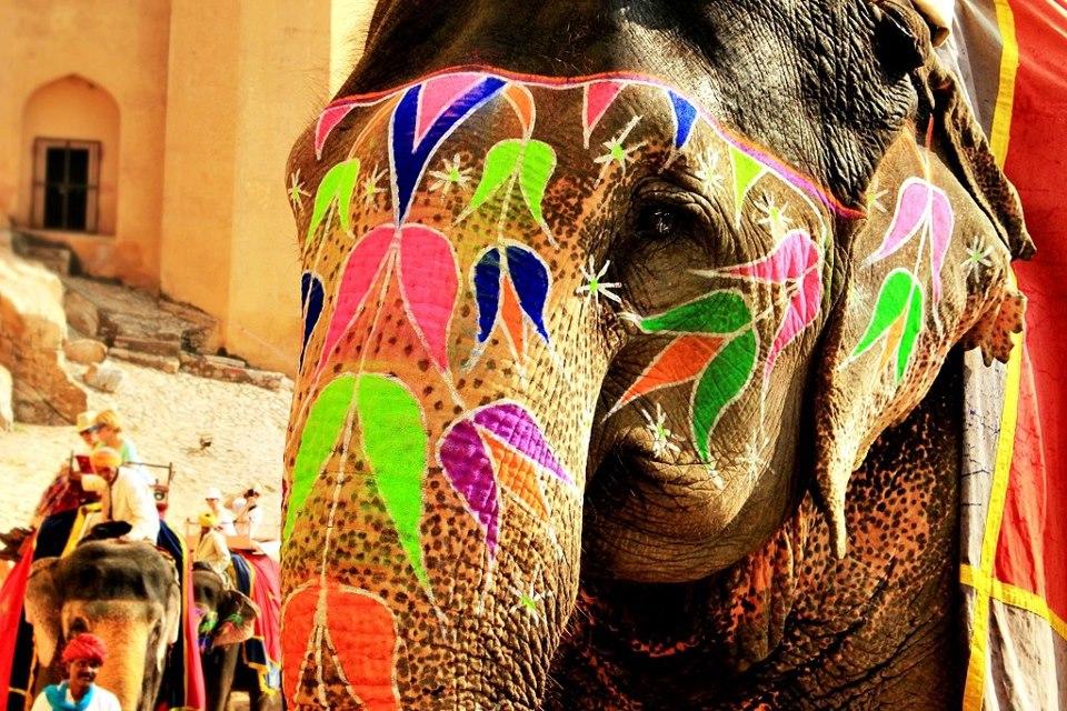 elefante con trompa pintada