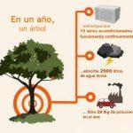 Lo que hace un árbol en un año
