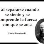 Es al separarse cuando se siente y se comprende la fuerza con que se ama (Dostoievski)