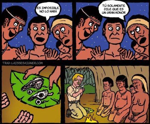 Broma indígena