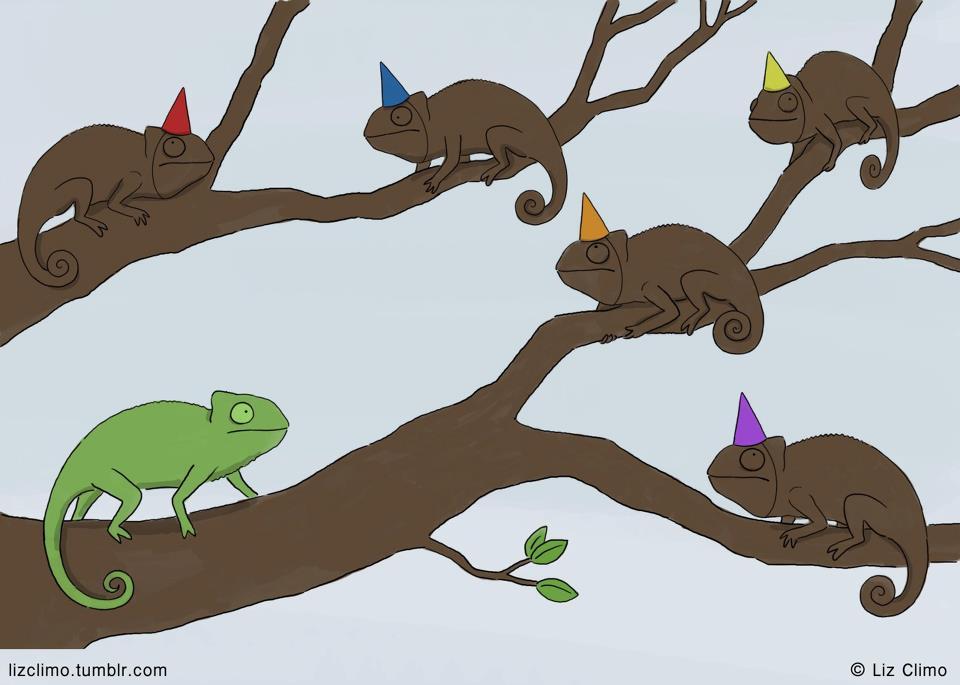 Fiesta sorpresa a un camaleón
