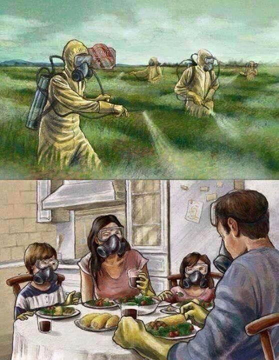 fumigando cultivos con mascarillas de oxigeno - familia comiendo con mascaras