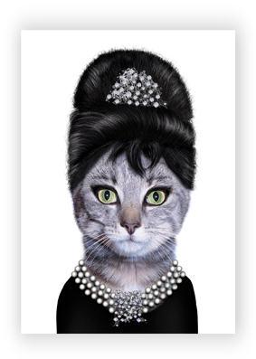 Gato - Audrey Hepburn
