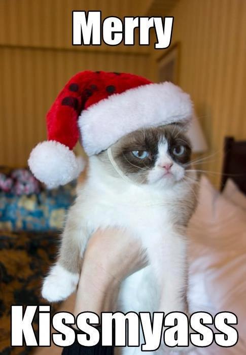 gato-navidad-merry-kissmyass