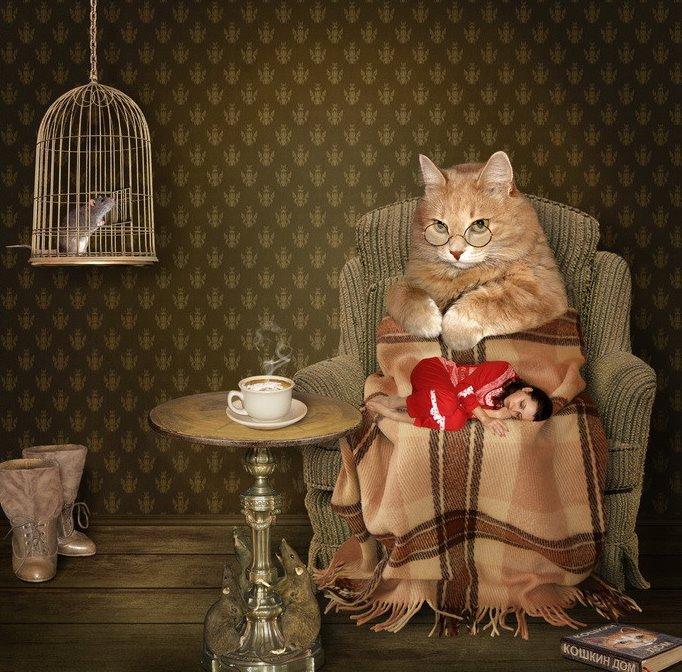 Gatos y personas - Invirtiendo los papeles