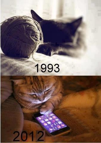 gatos en 1993  jugando con ovillos - 2012 jugando con moviles