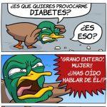 El pato enfadado