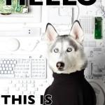 Hola, soy Steve Dogs