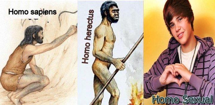 Evolución del ser humano 2