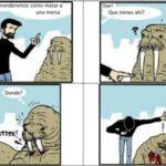 Cómo matar a una morsa