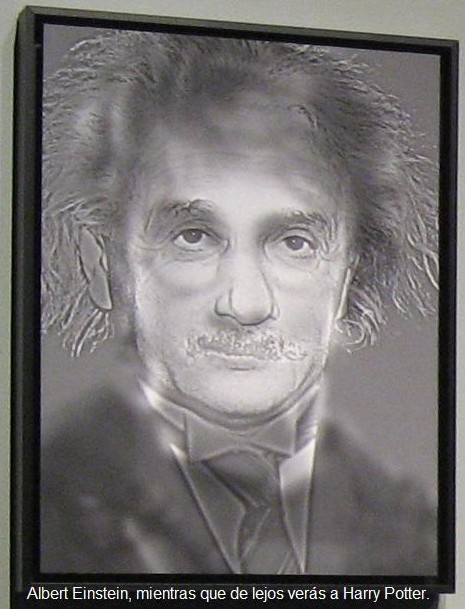 ¿Albert Einstein o Harry Potter?