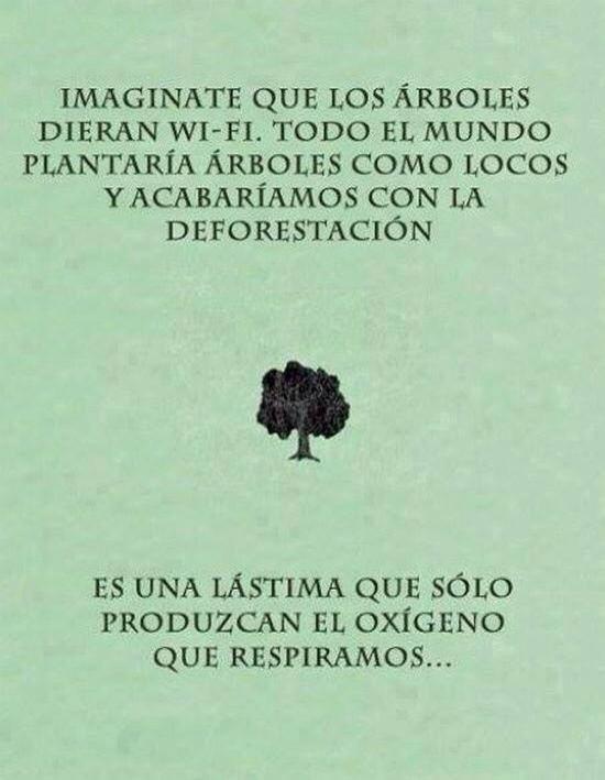 imaginate que los arboles dieran wi-fi, es una lastima que solo produzcan el oxigeno que respiramos