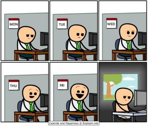 La vida del informático