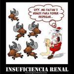 Insuficiencia renal: Definición gráfica