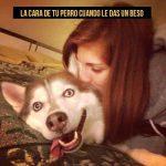 La cara de tu perro cuando le das un beso