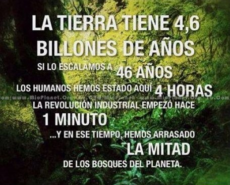 la tierra tiene 4.6 billones de años - en 1 minuto hemos arrasado la mitad de los bosques del planeta