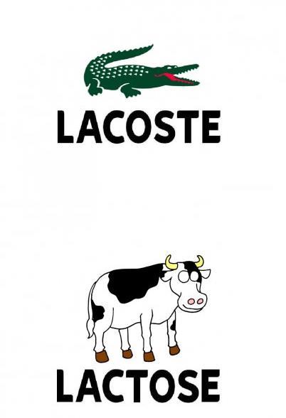 lacoste - lactose