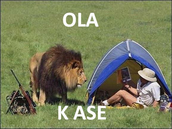 leon vs cazador - ola k ase
