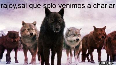 lobos crepusculo - rajoy, sal, que solo venimos a charlar