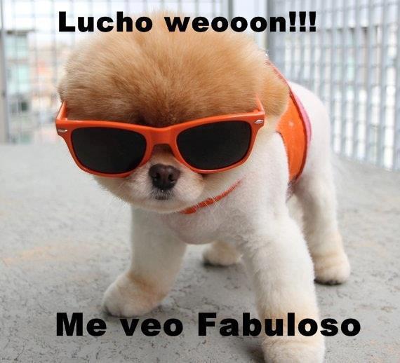 Lucho weooon, me veo fabuloso