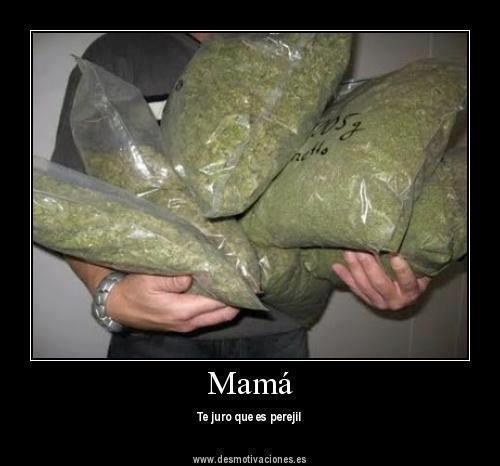 Hijo, ¿qué llevas en esas bolsas?