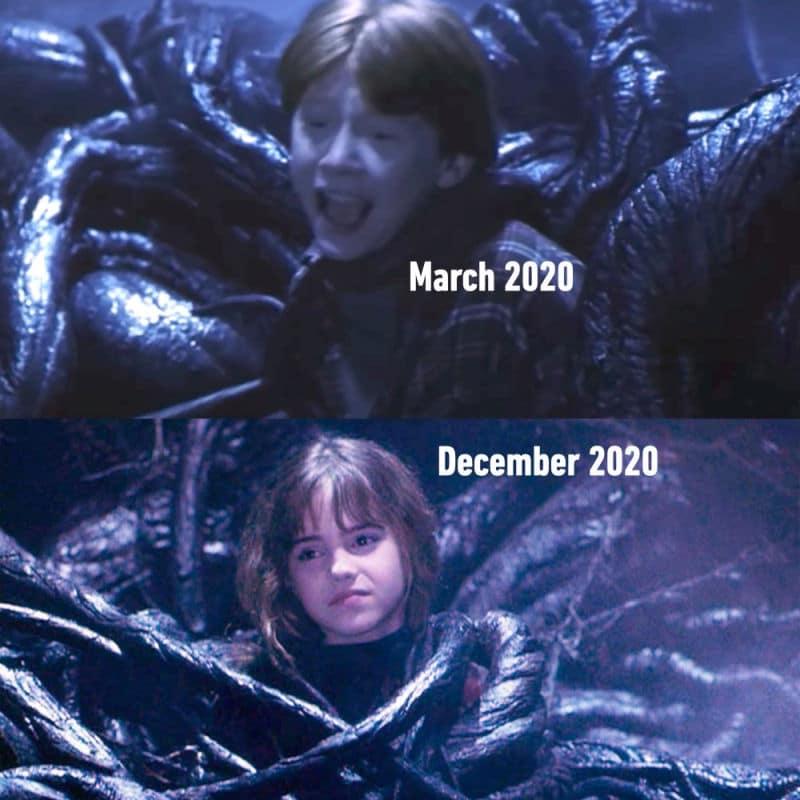 marzo 2020 vs diciembre 2020