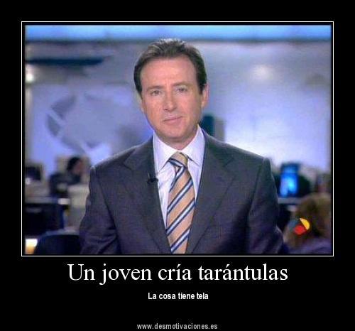 Matías Prats - Un joven cría tarántulas...