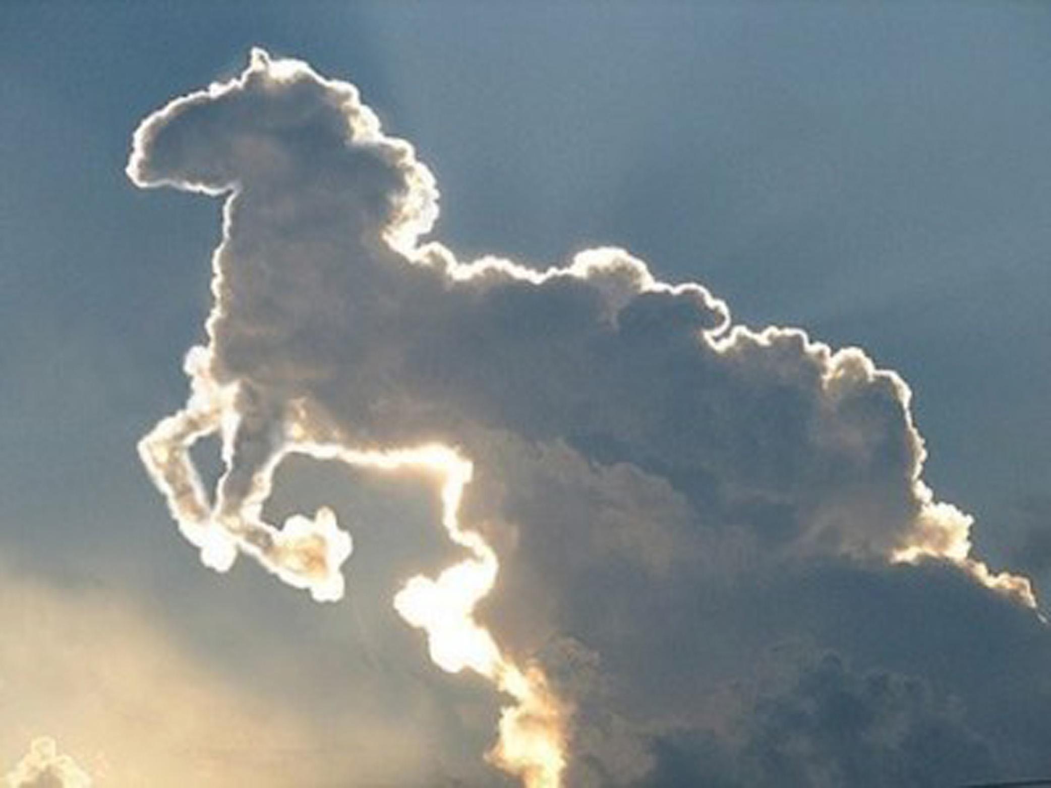 Nube con forma de caballo