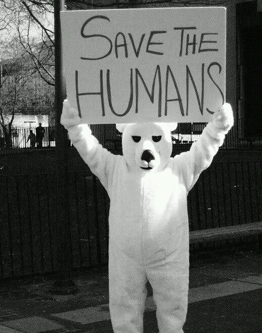 oso con cartel - save the humans