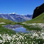 Paisaje – Lago y montañas
