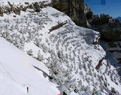 paisaje nevado con forma de cara