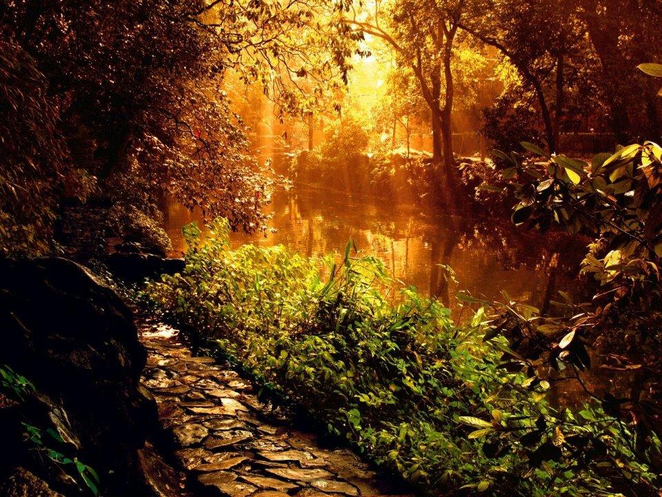 Atardecer a la orilla del río