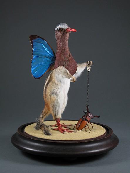 Pájaro y mascota